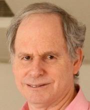 Daniel  Rosenfeld
